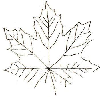 javorjev list svinčnik