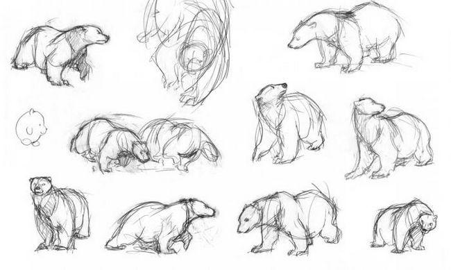 kako pripraviti polarne medvede