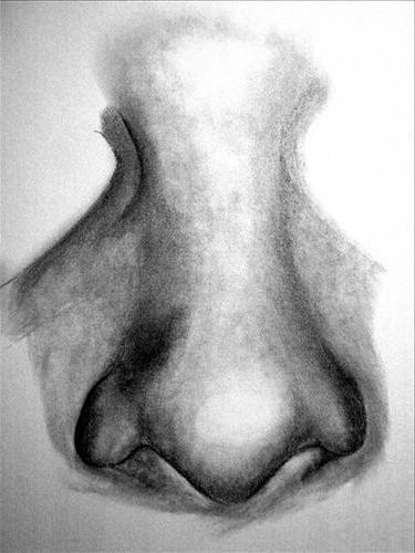 kako pripraviti nos