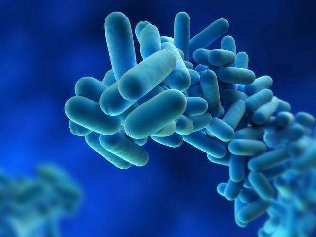 Legioneloza, simptomi legioneloze
