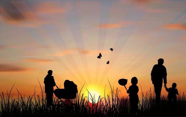 Osnove družinske psihologije. Psihologija družinskih odnosov