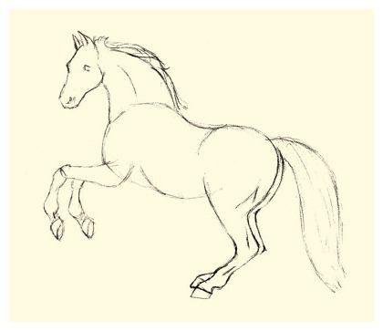 kako pripraviti čudovite konjske konje